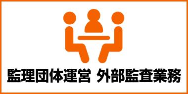 監理団体運営・外部監査業務